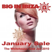 Big In Ibiza January Sale_2010_01_22_The White House Artwork